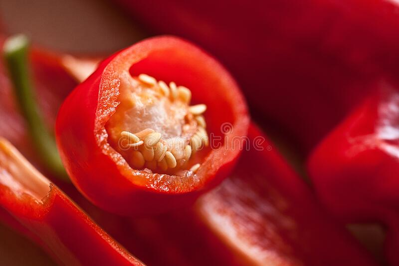 Red Chili Macro Photography royalty free stock photography