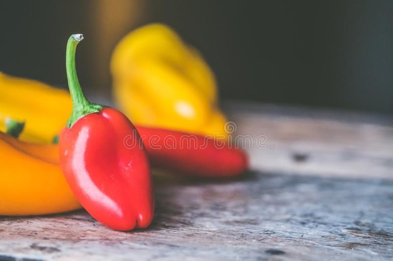 Red Chili Pepper on Gray Wooden Surface stock image