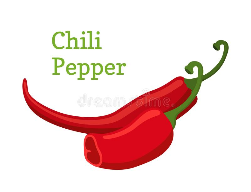 Red chili pepper, hot spicy pepper. Cartoon style. Vector illustration vector illustration