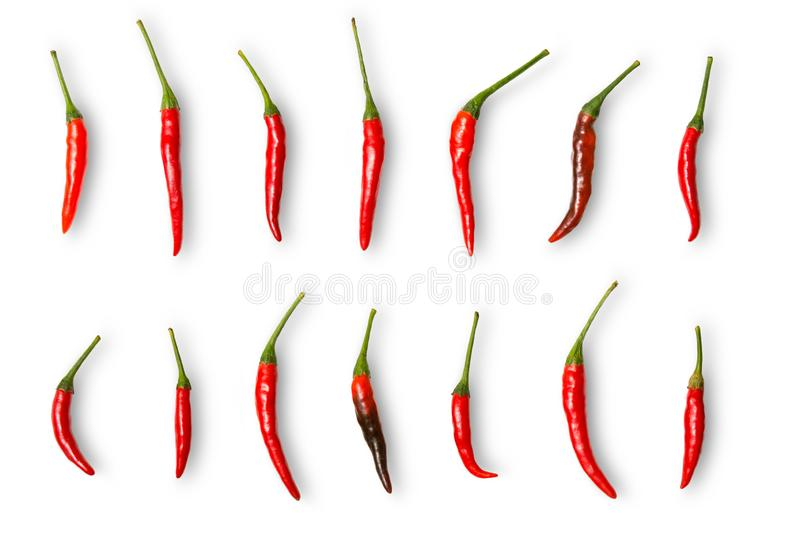 Red chili pepper isolated on white background with clipping path. Collection of red chilli stock images