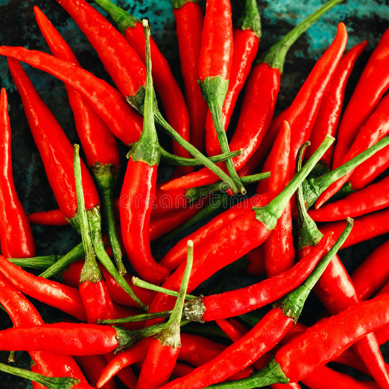 Red Chili Peppers Close-up royalty free stock photos