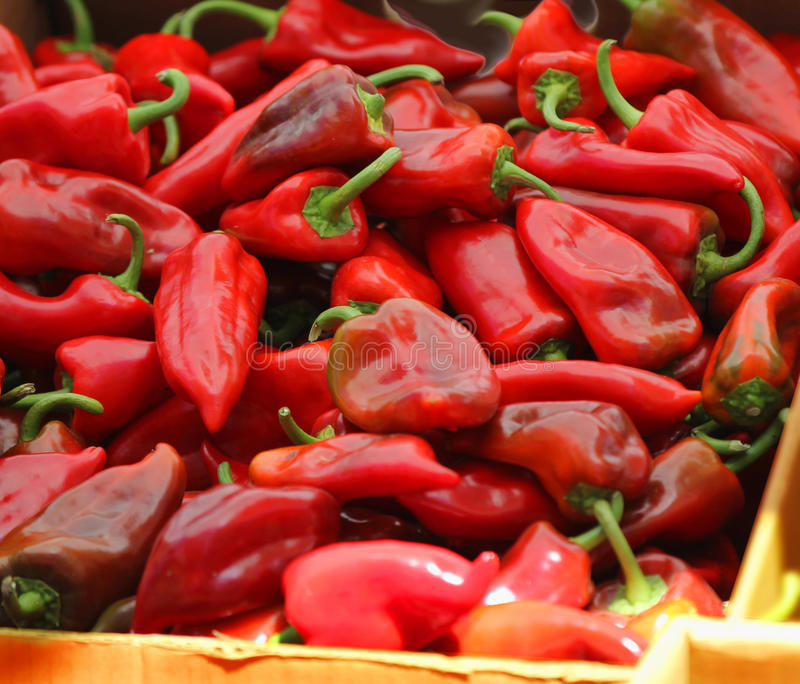 Download Red Chili Peppers At The Farmers Market. Stock Image - Image: 26745981
