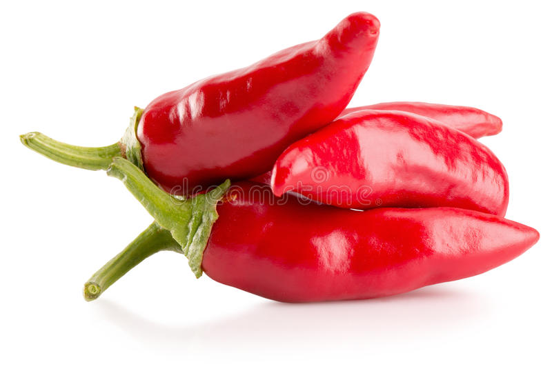 Red chili peppers isolated on the white background.  stock image