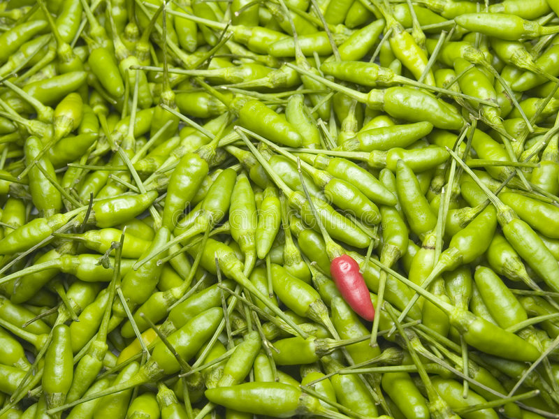 A Red Chili In A Pile of Green Chilies stock photos