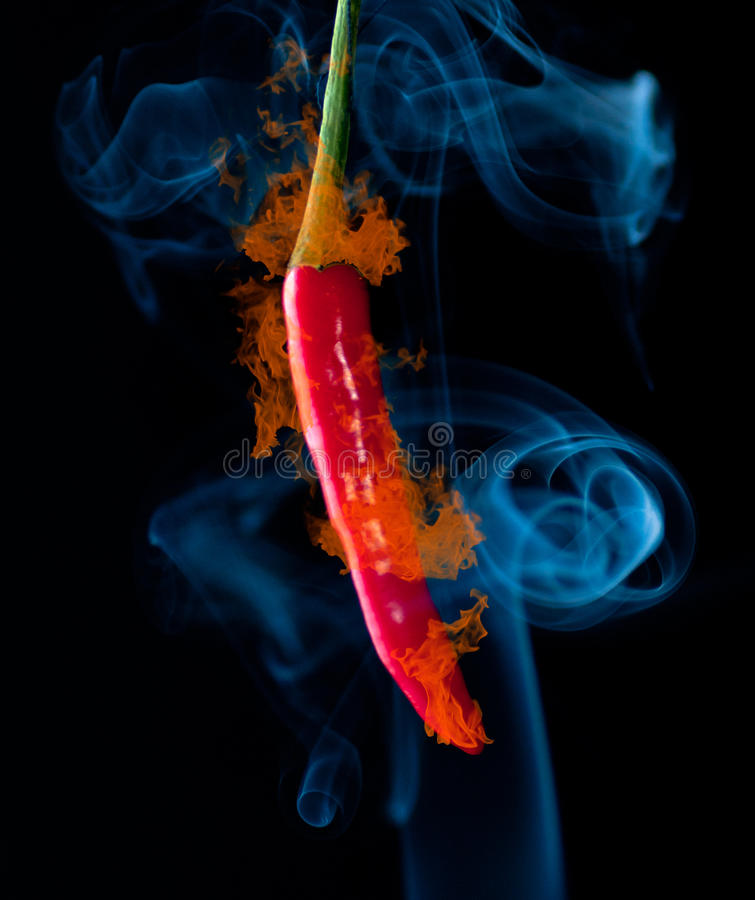 Download Red chilli stock image. Image of pepper, colorful, colors - 24540799