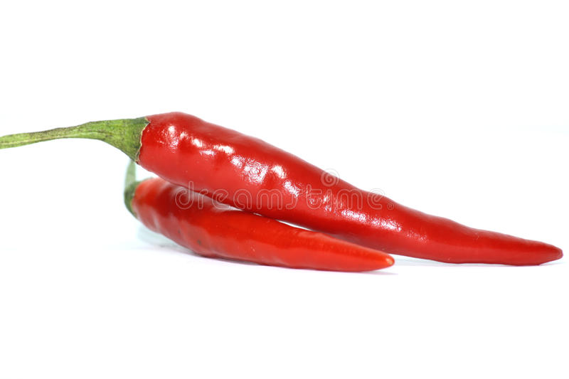 Download Red chilli stock photo. Image of green, ripe, healthy - 24714856