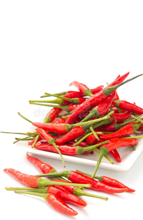 Download Red chilli stock photo. Image of multiple, white, chilies - 27296562