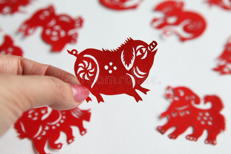 Red Chinese zodiac papercutting, Year of pig. Lady hand holding a red Chinese pig zodiac paper-cut,background with different zodiac paper-cuts stock photo