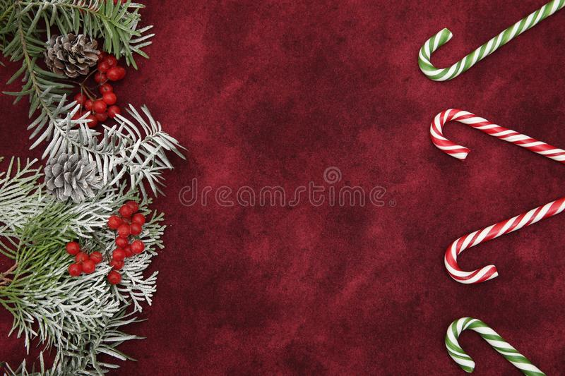 Red christmas background, composition ornament with fir branches, red berries and candy sweet caramel canes on a red background. stock photos