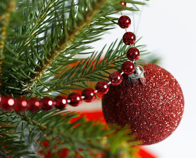 Download Red christmas ball stock image. Image of nature, green - 21593549