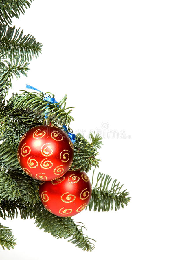 Red Christmas Ball In Tree With Room For Text Royalty Free Stock Images