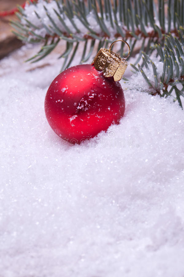 Red christmas ball under a pine tree
