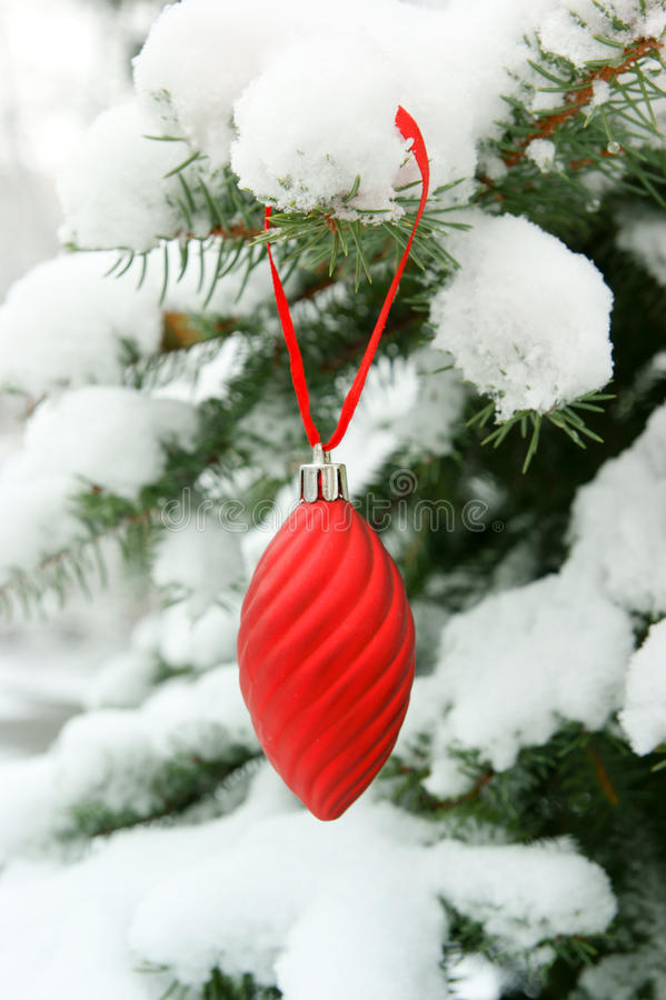 Red christmas cone on firtree stock images