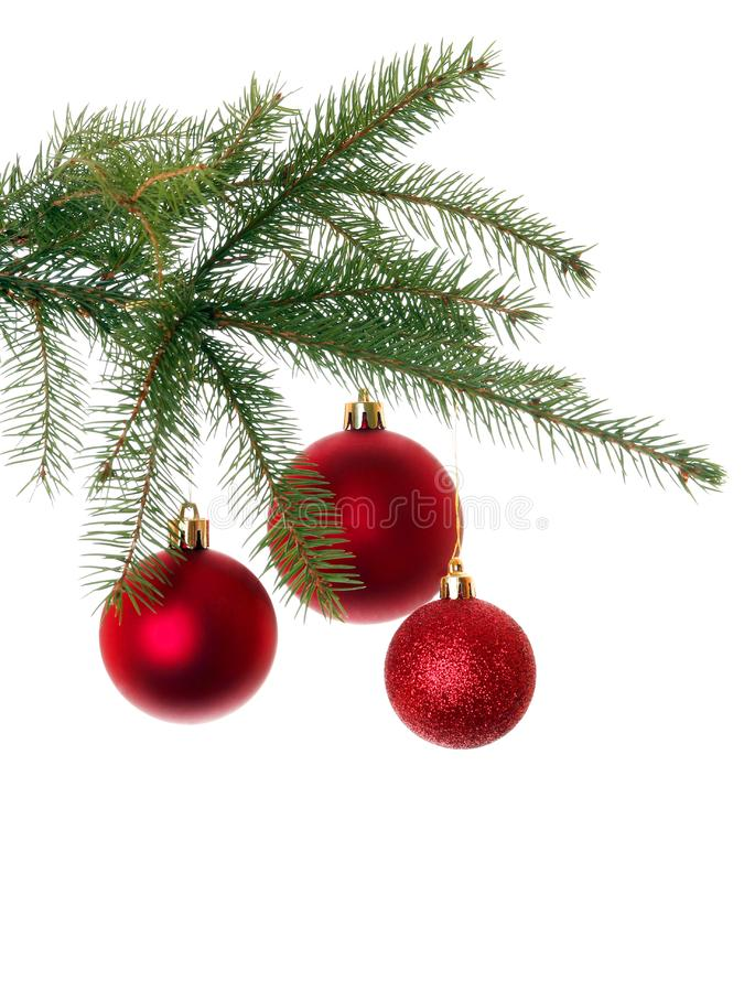 Red Christmas decoration on Christmas tree royalty free stock photos