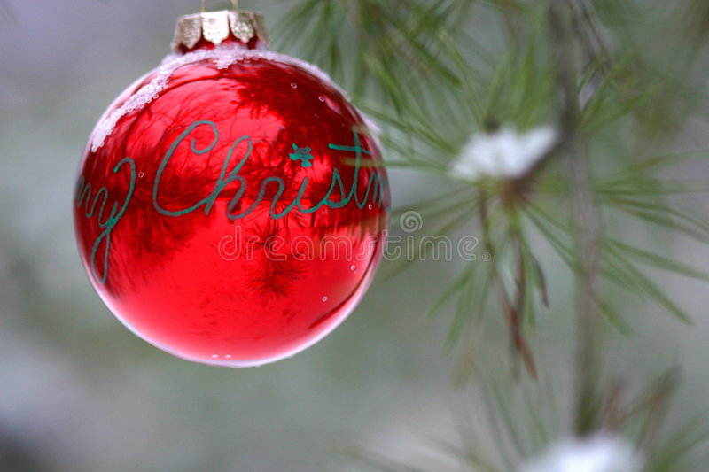 Download Red Christmas Decoration On Snow-covered Pine Tree Outdoors Royalty Free Stock Photo - Image: 1860075