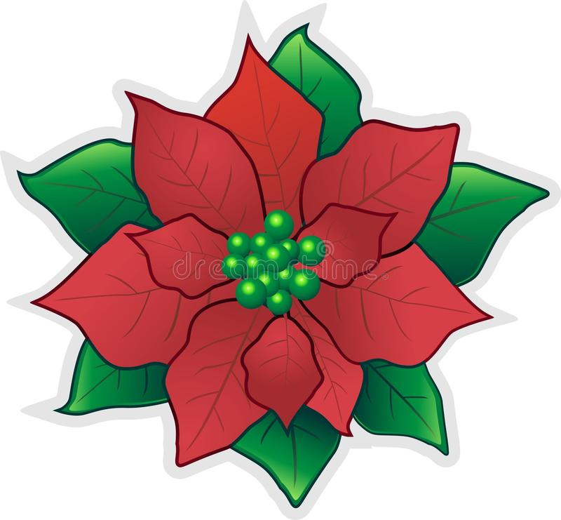 Free Red Christmas Flower-Poinsettia Stock Image - 16667851