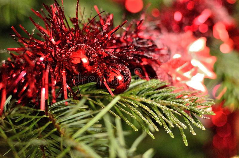 Red Christmas Garland with artificial snow on Christmas Tree royalty free stock images