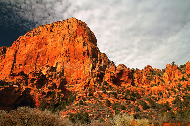 Red Cliffs of Kolob Canyon. The sheer, vibrant red rock of Kolob Canyon glows in the late afternoon light stock photos