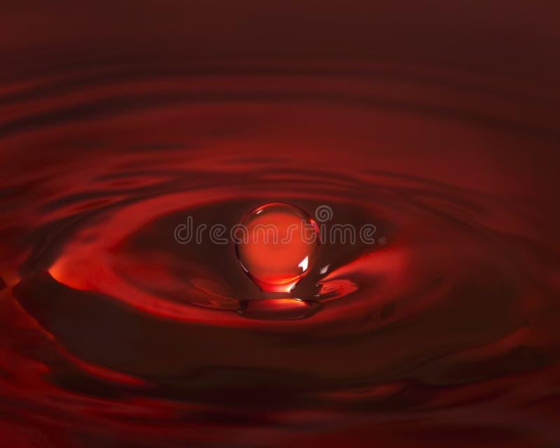 Red, Close Up, Still Life Photography, Drop royalty free stock photos