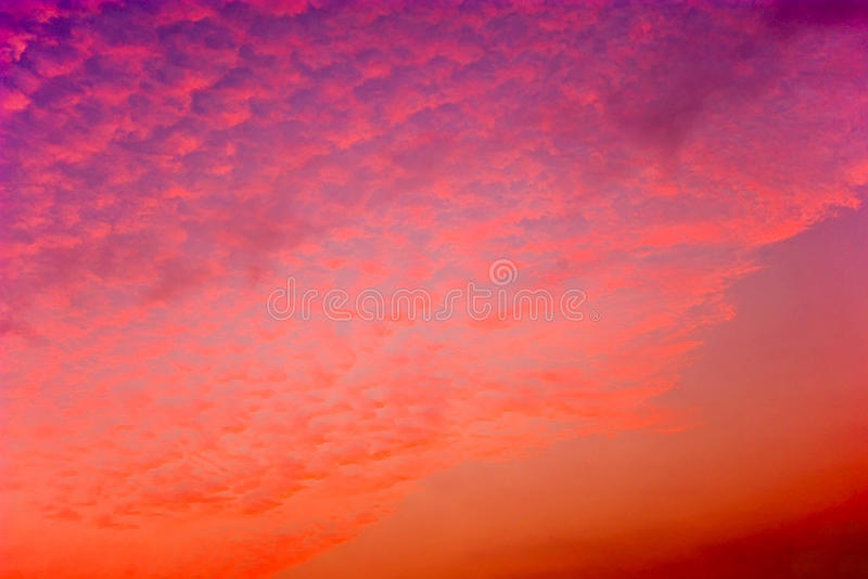 Red clouds. In the evening, cotton-like clouds stock photo