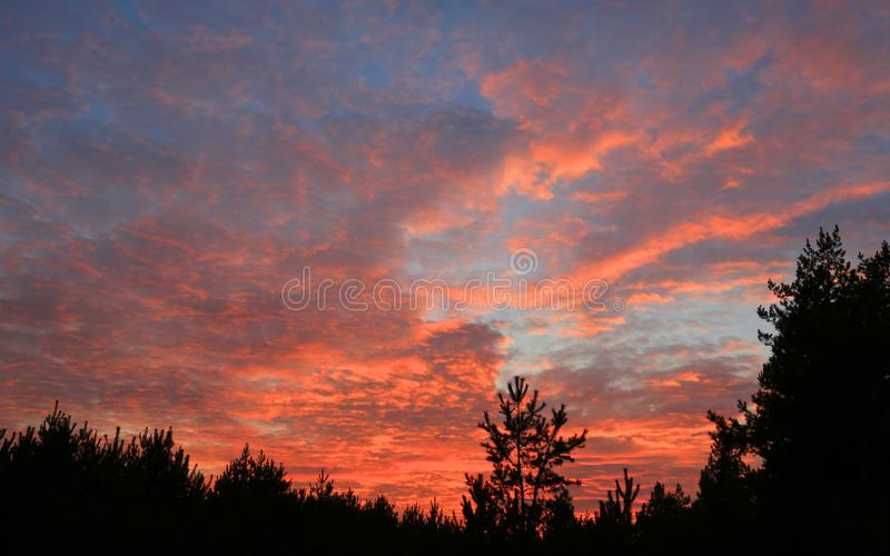 Red clouds in evening sky stock images