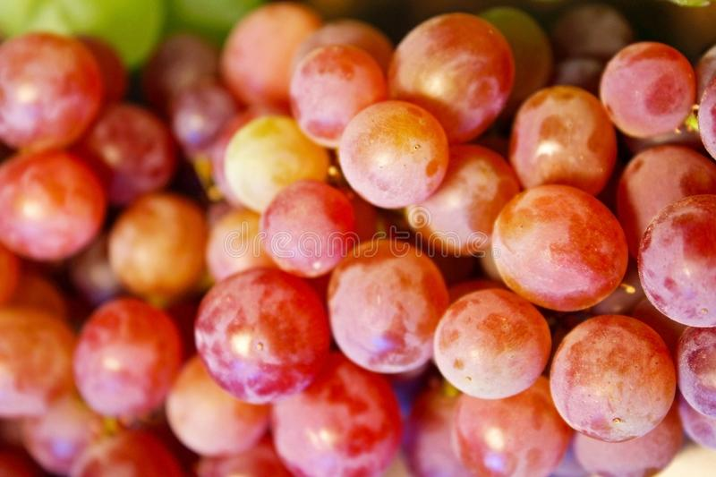 Small Crimson Seedless grapes royalty free stock image