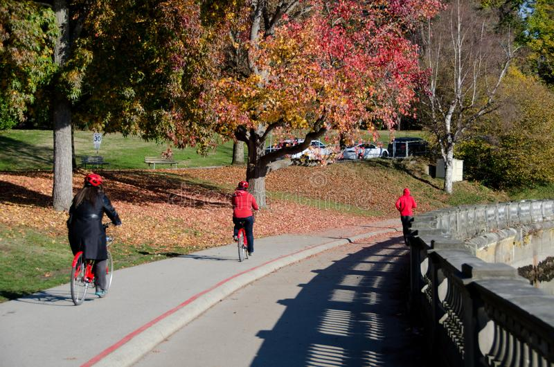 Red colors on runners and bicyclists in Stanley park stock image