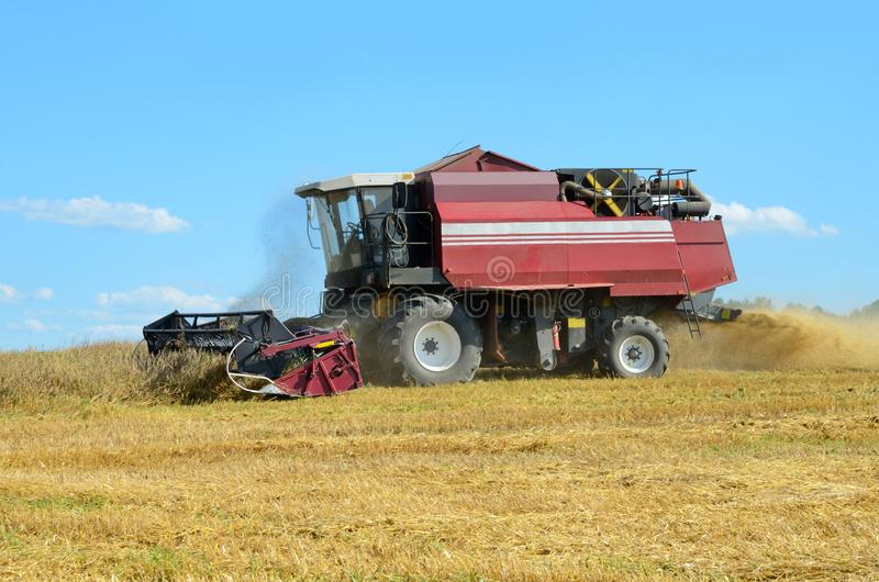 Red combine harvesting stock photo