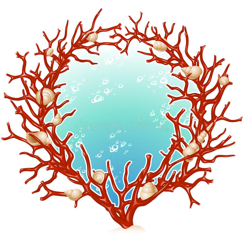 Red coral frame. Vector Red coral and seashell frame