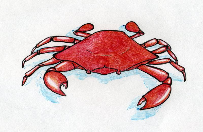 Red crab with blue shadow. Hand drawn with colored ink pen stock illustration