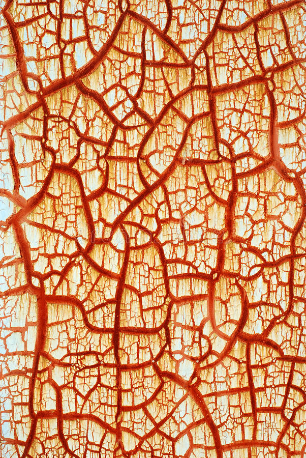 Red crack. On the door like the vascular royalty free stock image