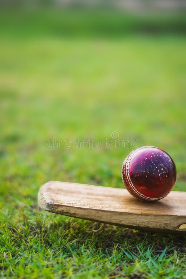 Red cricket ball on the bat in green playground stock images