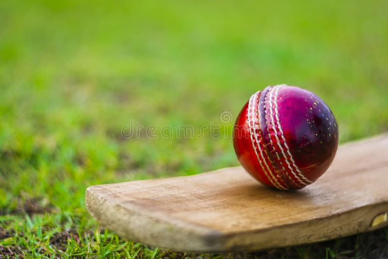 Red cricket ball on the bat in green playground. Red blued Cricket ball and bat with yellow grip good use for sports royalty free stock photography