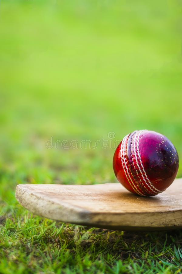 Red cricket ball on the bat in green playground. Red blued Cricket ball and bat with yellow grip good use for sports royalty free stock photo