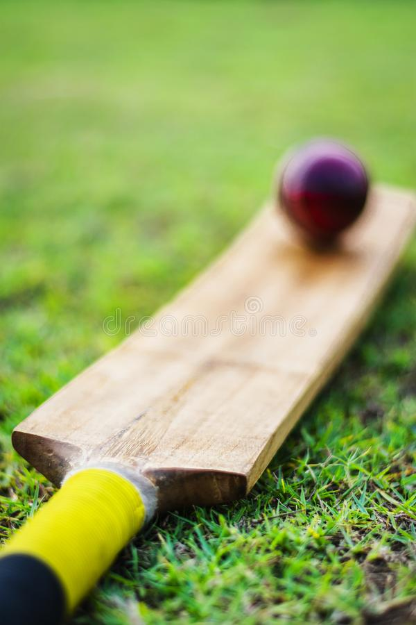Red cricket ball with bat in green playground. Red blued Cricket ball and bat with yellow grip good use for sports stock image