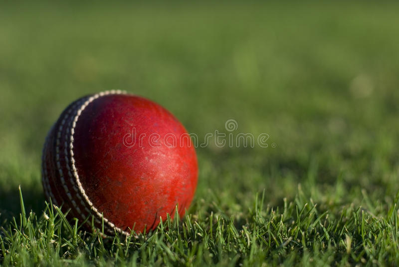Red Cricket Ball On Grass. A red cricket ball on green grass background stock photography