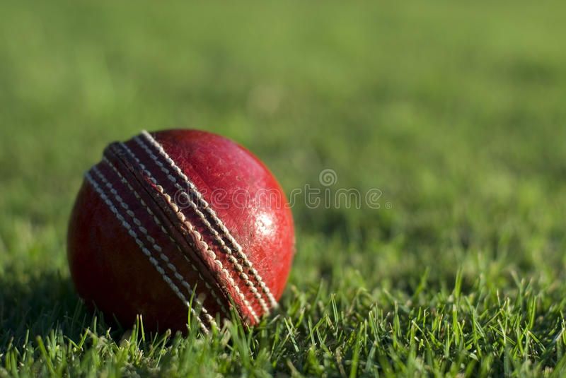 Red cricket ball on green grass. Close up of a side lit red cricket ball on the green grass of a sports field, with copyspace royalty free stock photography