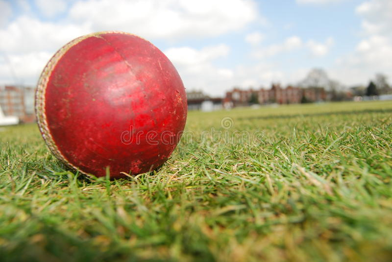 Red cricket ball on green grass stock image
