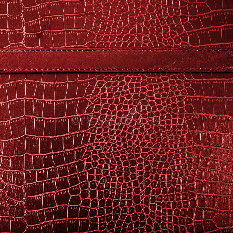Red crocodile leather texture background. With detail stock photos