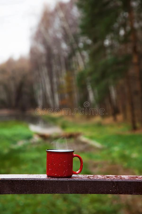 Red Cup with a drink on the wooden bridge in the forest stock images