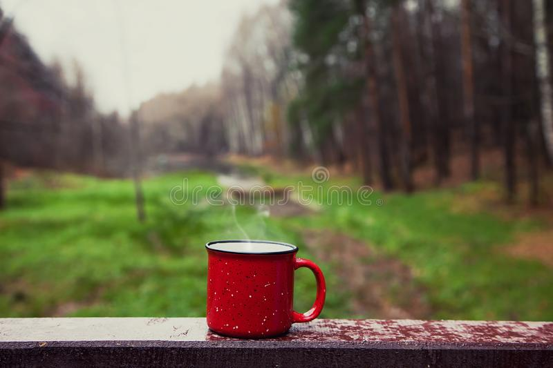 Red Cup with a drink on the wooden bridge in the forest stock photo