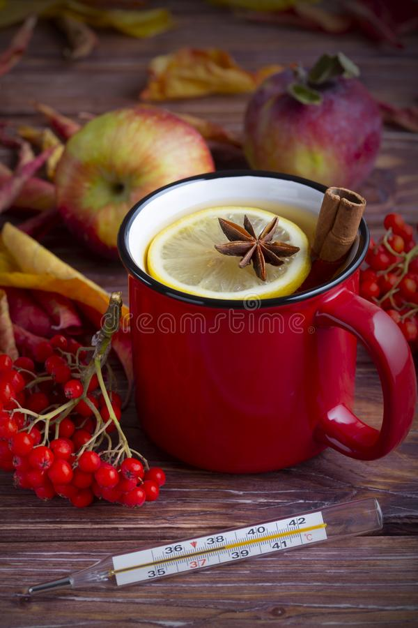 Red cup of tea with lemon, anise and cinnamon with glass thermometer, rowan, apples and autumn colorful leaves. stock images