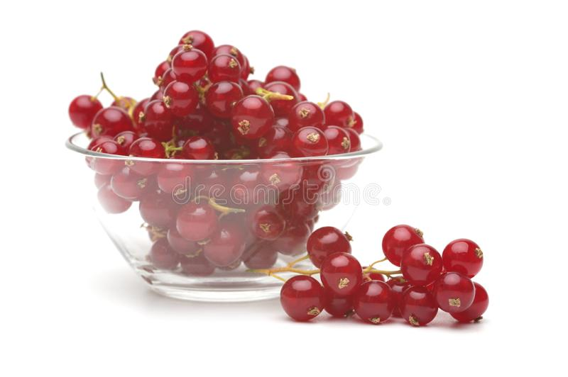 Download Red currant stock image. Image of plate, juicy, currant - 15267297