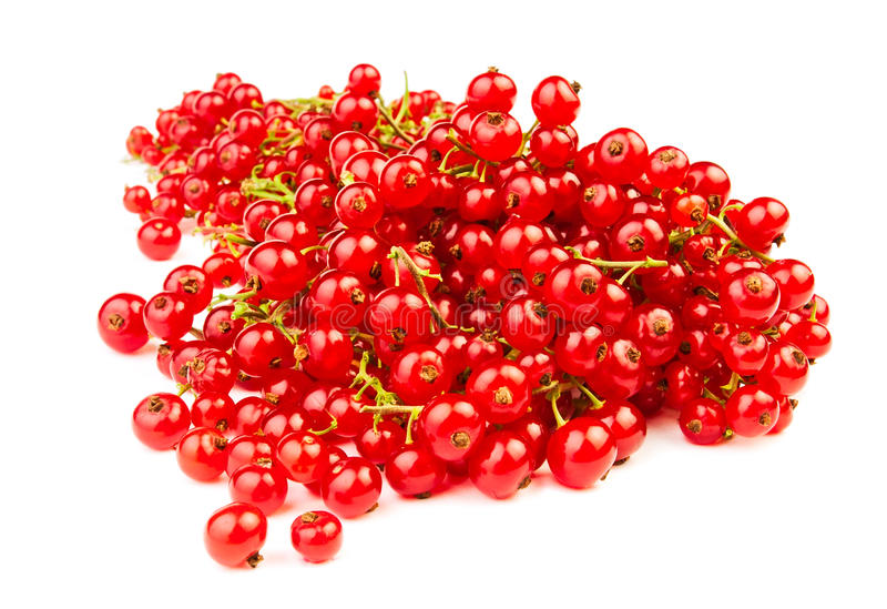 Download Red currant stock photo. Image of stem, small, sour, dessert - 25317326