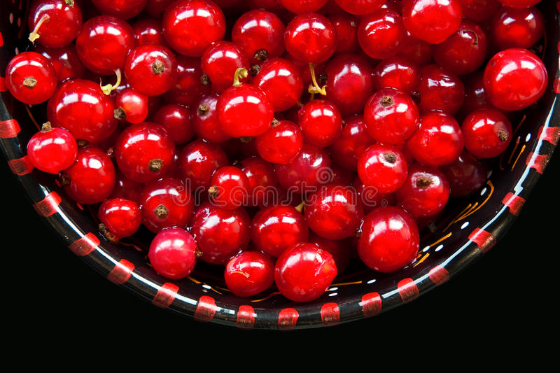 Download Red currant berries stock photo. Image of nature, natural - 14831370