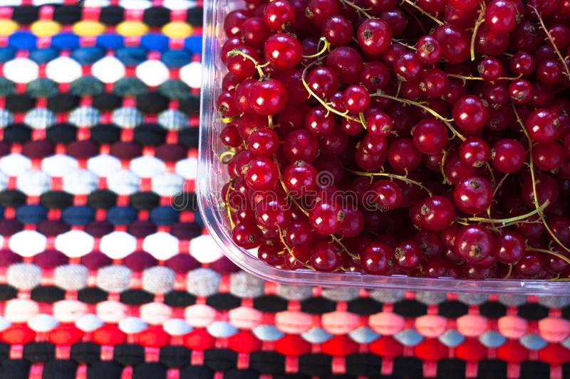 Red currant in a box on a colourful fabric background. Tasty fresh berries, vitamins, vegan, natural, raw food. royalty free stock photos