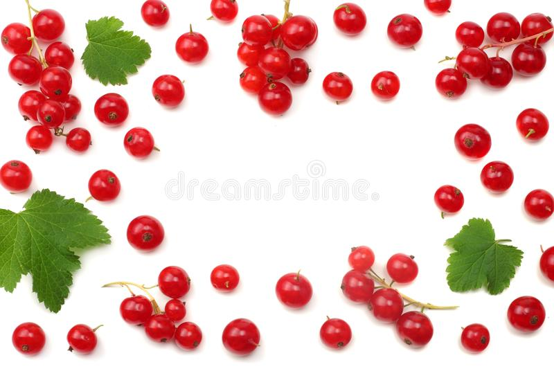 Red currant with green leaf isolated on a white background. healthy food. top view stock photo