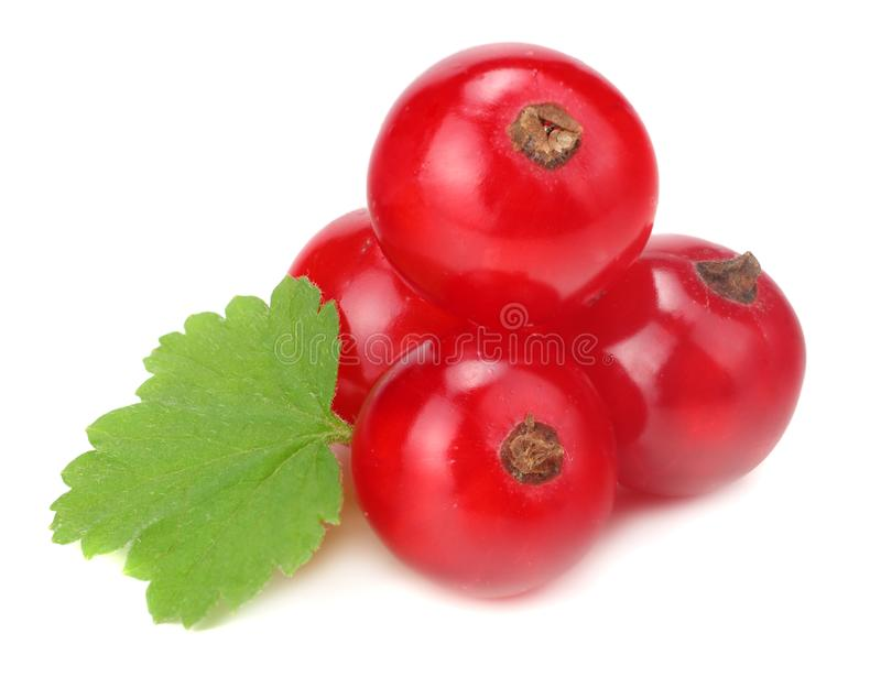 Red currant with green leaf isolated on a white background. macro. healthy food royalty free stock photography