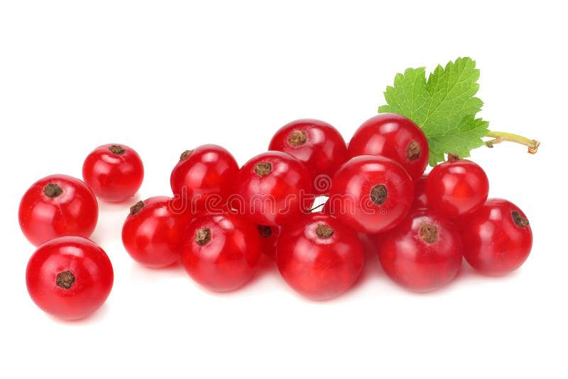 Red currant with green leaf isolated on a white background. macro. healthy food royalty free stock photos