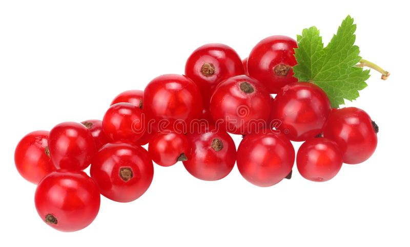 Red currant with green leaf isolated on a white background. macro. healthy food stock images